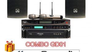 dan-karaoke-gia-dinh-gd01-1